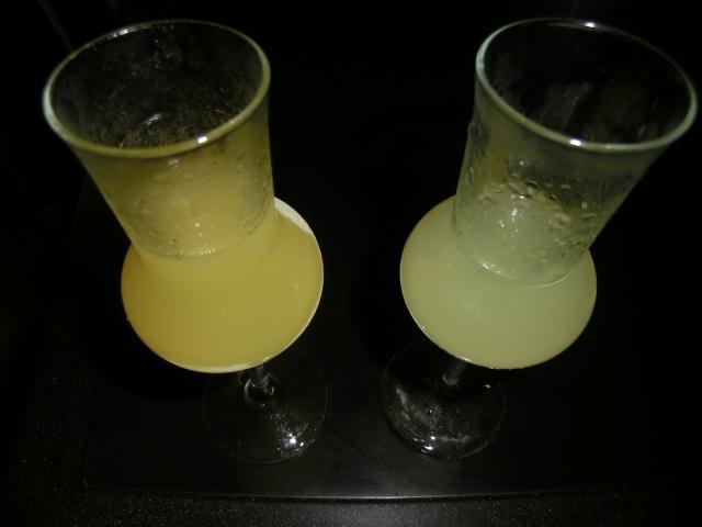 CIMG3399 - 【絶品】リモンチェッロとは?作り方・レシピ比較とおすすめ飲み方