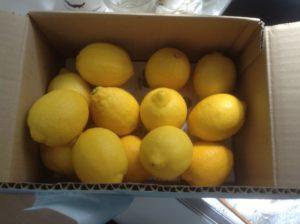 IMG 1258 300x224 - 【絶品】リモンチェッロとは?作り方・レシピ比較とおすすめ飲み方
