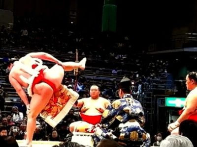 156691d5407c3eb3104db5f94df109b9 1 400x300 - 藤井四段の相撲観戦で分かった「国民的スター性」【画像と動画】
