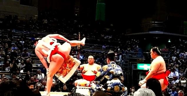 156691d5407c3eb3104db5f94df109b9 1 - 藤井四段の相撲観戦で分かった「国民的スター性」【画像と動画】