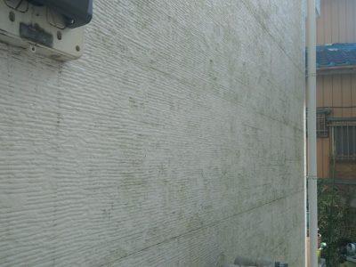 8cc7484734a9479e5bf98e3764dc2340 400x300 - 家の外壁のコケ(苔)取り・藻の除去の方法徹底調査で最安の方法コレ