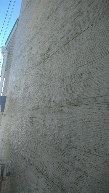 c43fd2100e613d50316bdb78bf54c97c - 家の外壁のコケ(苔)取り・藻の除去の方法徹底調査で最安の方法コレ